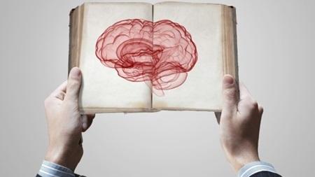 脳が活性化される